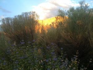 Sunset on the Piedras Lumbras